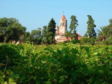 Abbaye depuis les Vignes / © DR