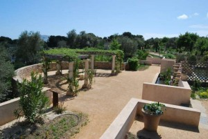 Conferences Jardin Antique Mediterraneen Iter Vitis