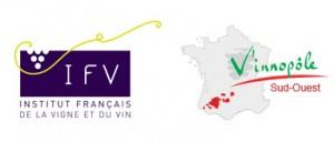 IFV VInopole