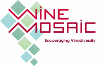 Logo-Winemosaic-