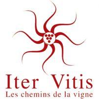 Iter Vitis Les chemins de la vigne / © DR