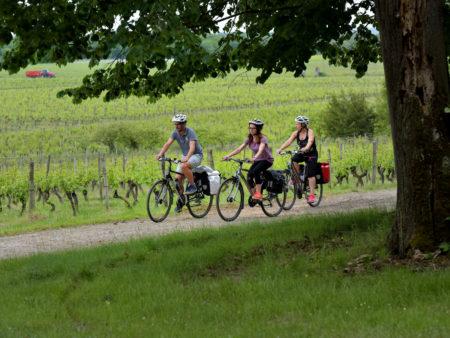Vignoble de Fronton, le Canal des 2 mers à vélo / © Nathalie Lacomme - Maison des vins Fronton