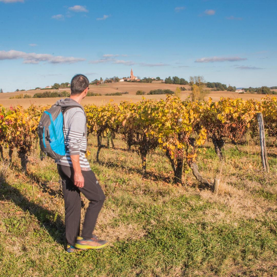 Vignoble de Fronton, rando / © Nathalie Lacomme - Maison des vins Fronton