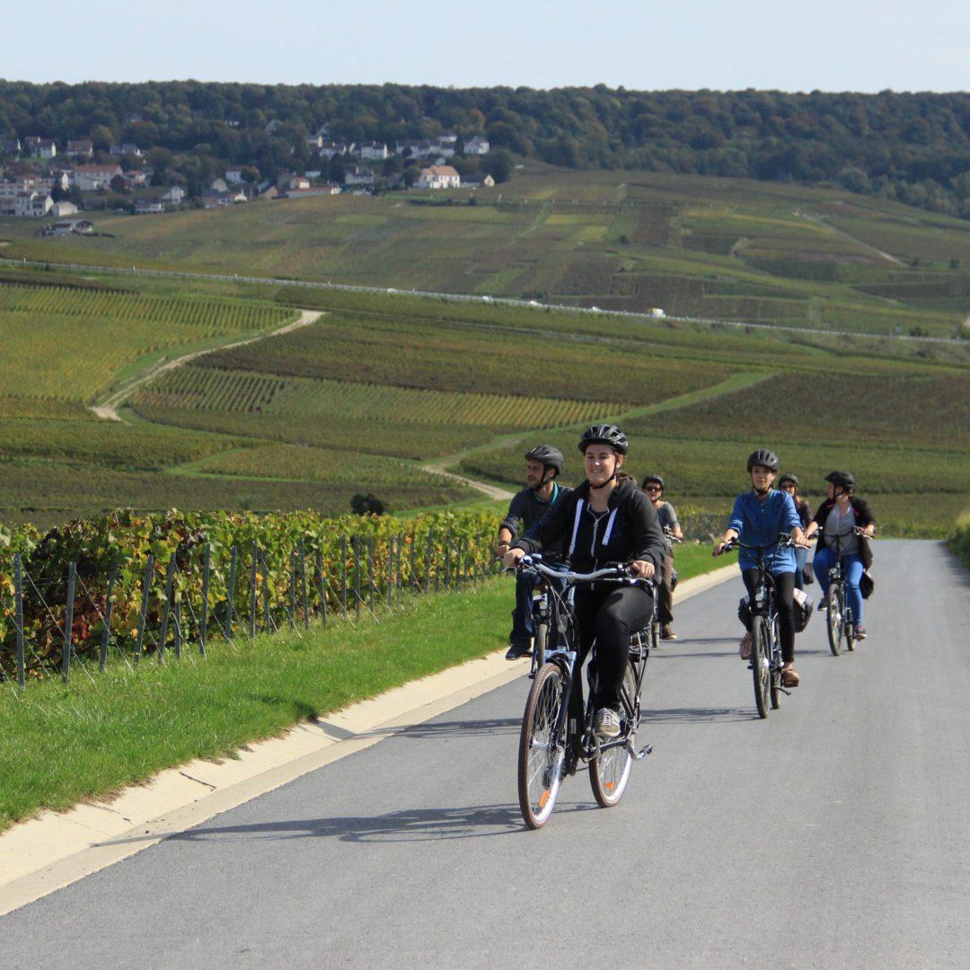 Balade à Vélo - Hautvillers©E. Vidal-Coll. ADT Marne67
