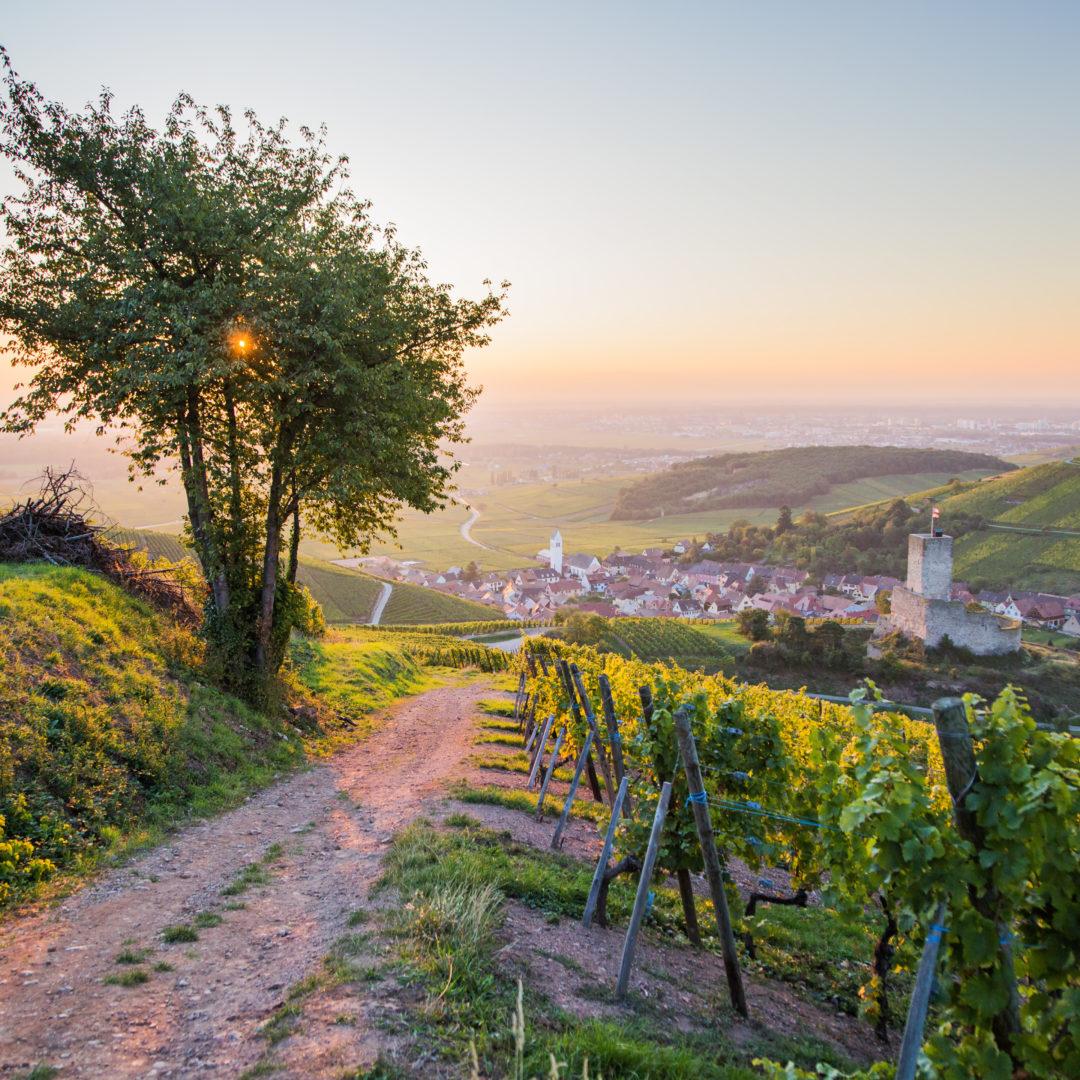 Katzenthal-Lever de soleil © Tristan Vuano - ADT